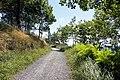 Bilbao - trail.jpg