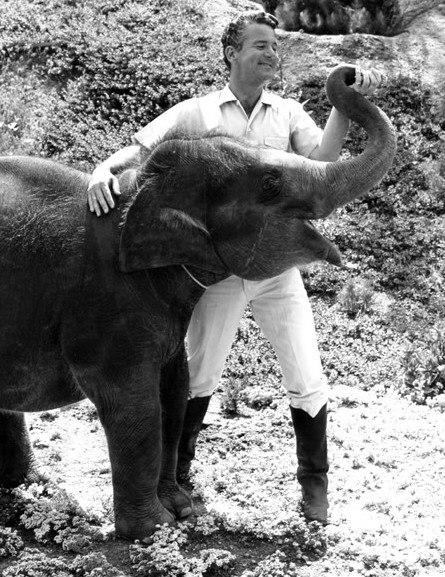 Bill Burrud Animal Kingdom 1968