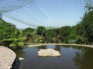Birds of Eden - Inside the aviary