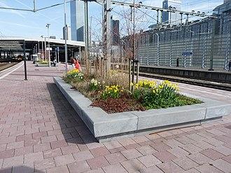 Railway platform - Platform at Rotterdam Centraal station, Netherlands