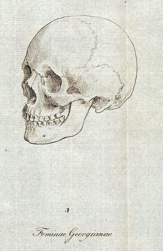 Drawing of the skull of a Georgian female by Johann Friedrich Blumenbach, used as an archetype for the Caucasian racial characteristics in his 1795 De Generis Humani Varietate Blumenbach-Caucasian.jpg