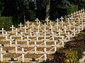 Bologna Pol cemetery fc19.jpg