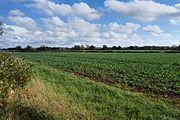Bosworth Battlefield true location