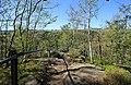 Brückenklippe, Wolkensteiner Schweiz in Sachsen 2H1A2662WI.jpg