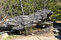 Brückenklippe, Wolkensteiner Schweiz in Sachsen 2H1A2742WI.jpg