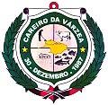 Brasão do Careiro da Várzea (Amazonas).jpg