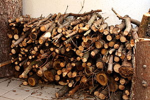 Firewood - Stack of firewood next to a building