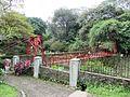 Bridge - panoramio (124).jpg