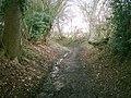 Bridleway - geograph.org.uk - 110032.jpg