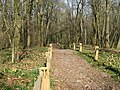 Bridleway near Springs Farm - geograph.org.uk - 1211733.jpg