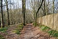 Bridleway through Green Wood (5) - geograph.org.uk - 1252964.jpg