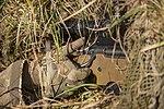British Army Sniper Commanders Course MOD 45163350.jpg