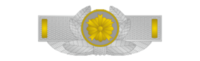 Brooch rank insigna for policeman of japanese police.png