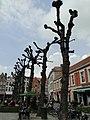 Brugge - panoramio (111).jpg