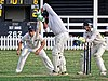 Buckhurst Hill CC v Dodgers CC at Buckhurst Hill, Essex, England 52.jpg