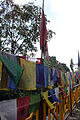 Buddhist prayer flags, Sikkim, India (8064022092).jpg