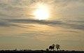 Buggenum gezien vanuit Neer ( het Noorden) Limburg.jpg