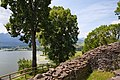 Burg-Hopfen-JR-E-5352-2021-06-28.jpg