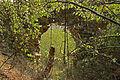 Burgruine Stallegg 03 2015-08.jpg