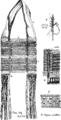 Burmese Textiles Fig29.png