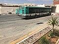 Bus SRT Médenine, 2017-3.jpg