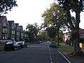 Bushmead Avenue, Bedford - geograph.org.uk - 552627.jpg