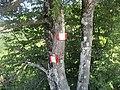 CAI 687 Segnavia 06.jpg