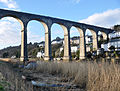 Calstock Viaduct from Devon bank.jpg