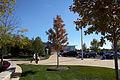 Campus Fall 2013 118 (10291925875).jpg