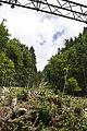 Canton de Schwytz - panoramio (90).jpg