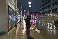 Capturing the Light (16560190142).jpg