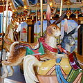 Carousel Rabbits Philly.JPG