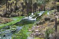 Cascada de los siete colores.jpg