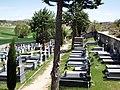 Cementerio de Baños de Valdearados 3.jpg