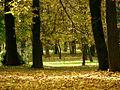Central Park Cluj-Napoca.jpg