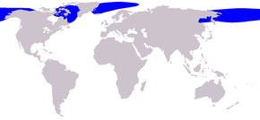 Description de l'image  Cetacea range map Bowhead Whale.png.