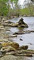 Chapman State Park Apr 14, 2017, 8-045 sharing (35099511355).jpg