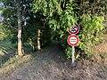 Chemin à Druyes-les-Belles-Fontaines (juillet 2019).jpg