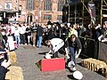 Chester Cheese Rolling Competition 2008 - geograph.org.uk - 704897.jpg