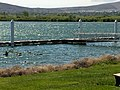 Chiawana Park - Pasco, Washington - Lake Wallula (0737).jpg