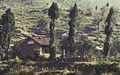 China1982-141.jpg
