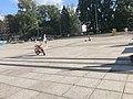 City of Vilnius,Lithuania in 2019.26.jpg