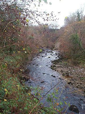 River Cladagh - Cladagh River flowing through Cladagh Glen