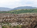 Cleared forestry with hills other side on Loch Linnhe in distance - geograph.org.uk - 812557.jpg