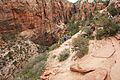 Climbing up to Angels Landing (Zion National Park) (3443203673).jpg