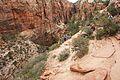 Climbing up to Angels Landing (Zion National Park) (3443203673).jpg