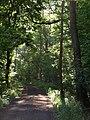 Clink Lane - geograph.org.uk - 1343347.jpg