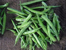 Cluster bean for sale.JPG
