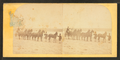 Coachmen, horses, and carriage, from Robert N. Dennis collection of stereoscopic views.png