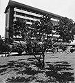 Collectie NMvWereldculturen, TM-20001050, Negatief, 'Gezicht op het Ambarokmo Palace Hotel met op de voorgrond een boom', fotograaf Boy Lawson, 1971.jpg